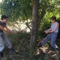 Philippa and Lynn working hard to set up camera traps! - Gorongosa Natinoal Park