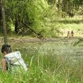Lynn following the floodplain troop baboons