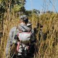 2017 Field Season - Surveying in Gorongosa. Photo by Luke Stalley
