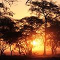 Sunset over the floodplain in Gorongosa National Park, taken during the Oxford-Gorongosa Paleo-Primate Field School 2018
