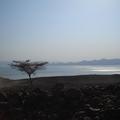 Arrival to the Southern end of the Lake Turkana, Koobi Fora, Kenya.