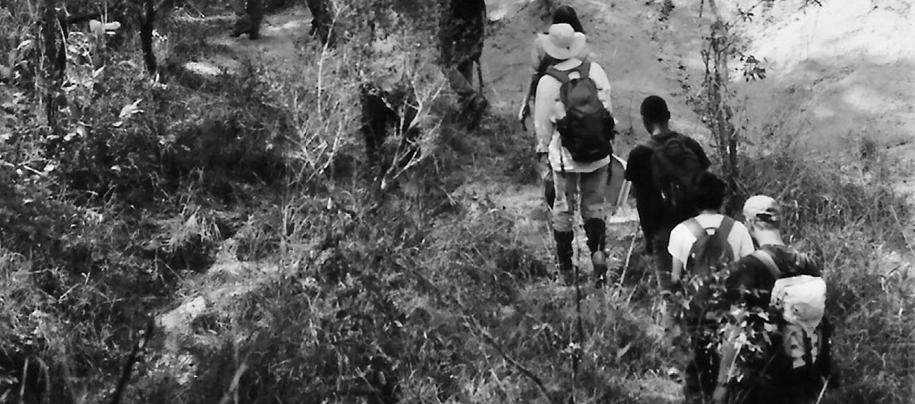 Paleo-Primate Team surveying in Gorongosa National Park, Mozambique