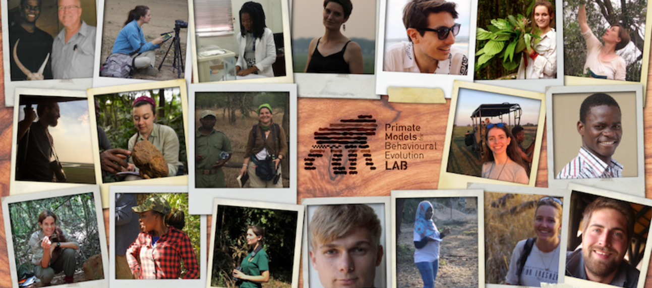 Polaroid-style photographs of the members of the Primate Models for Behavioural Evolution Lab as of March 2021, created by João d'Oliveira Coelho