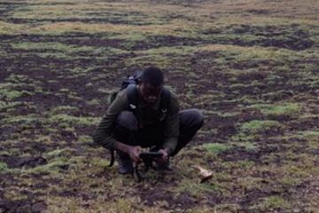 Jacinto Mathe conducting bone surveys in Gorongosa National Park, Mozambique (photographed by Norina Vicente)