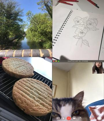 Lucy's non-academic activities - images showing a river flanked by trees and greenery taken from a bridge, a drawing of flowers, homebaked sponge cake, and Lucy on FaceTime to her cat