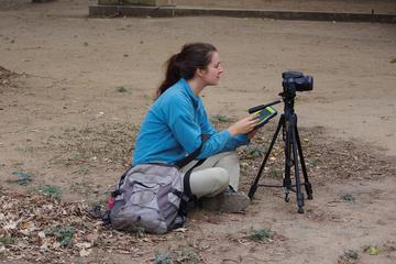 Lucy collecting video footage of chacma baboons (Papio ursinus) in Gorongosa National Park, Mozambique (2018)