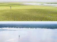 Gorongosa flooding comparison