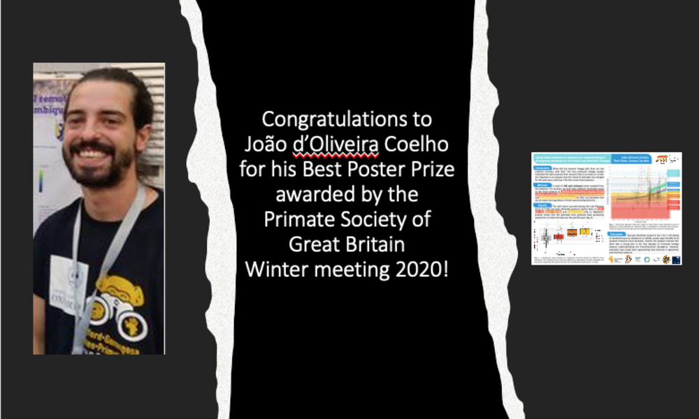 Congratulations to João d'Oliveira Coelho for his Best Poster Prize awarded by the Primate Society of Great Britain Winter Meeting 2020