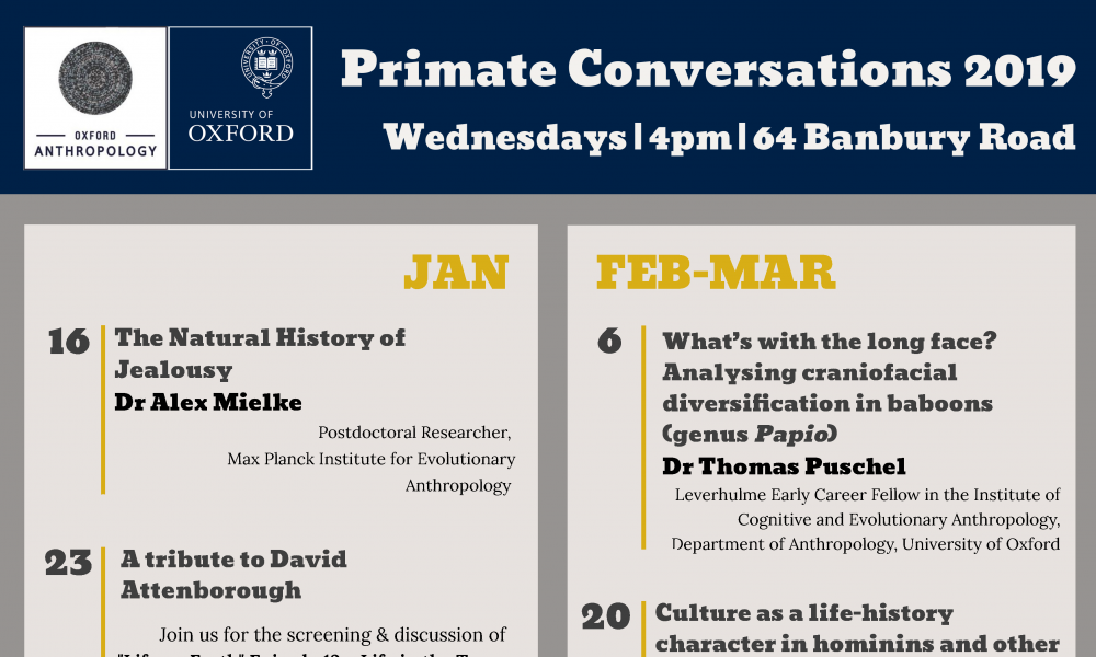Poster Primate Conversations January - March 2019